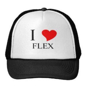 i_heart_flex_hat-r9e8e626886d4436c8b4fddeba5cc6003_v9wfy_8byvr_324