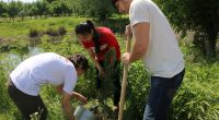 American Councils for International Education is pleased to announce the annual Global Youth Service Day (GYSD) Matching Grants program for FLEX and YES alumni. The GYSD Matching Grants program is […]